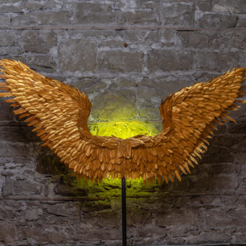 golden wings as photography background