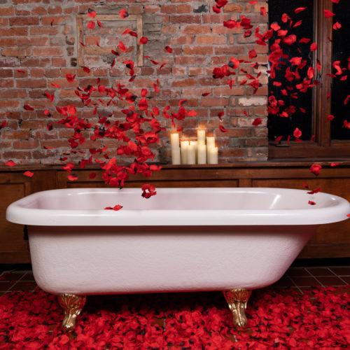 Rose bath photography prop