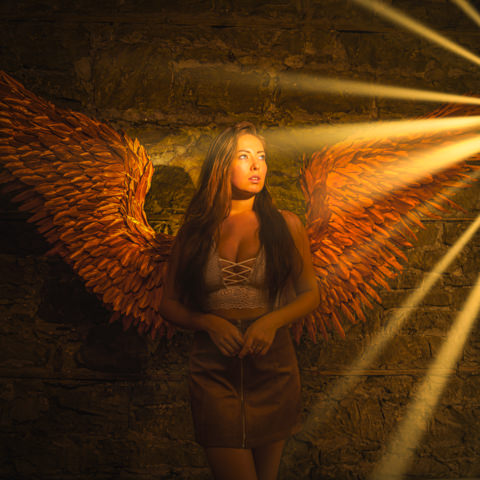 golden wings photography prop